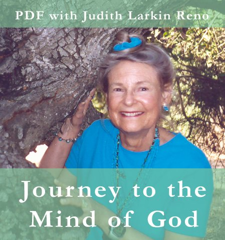 Journey to the Mind Of God